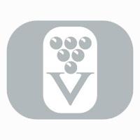vinovit.cz_logo